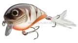Wobler Team Cormoran Belly Dog N rusty transparent 6,8cm